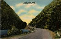 Vtg 1940's Stony Clove Notch Catskill Mountains New York NY Linen Postcard