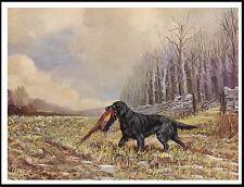 Flat Coated Retriever Winter Scene With Dog Retrieving Bird Lovely Print Poster