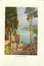 Stampa antica MALCESINE Lago di Garda Verona 1932 Old antique print