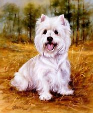 """WESTIE (WestHighland) ARTWORK-Killen on16 inch Fabric Panel to Sew.Pic is 8x10""""."""