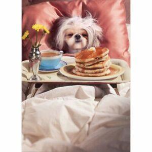 Avanti Press Breakfast In Bed Dog Mother's Day Card