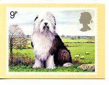 Peter Barrett Art-Old English Sheepdog-Royal Mail Post Stamp Card Postcard