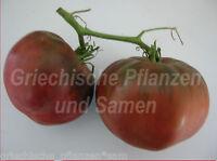 🔥 🍅 Schwarze Tomate BLACK FROM Tula alte Sorte kältetolerant 10 frische Samen