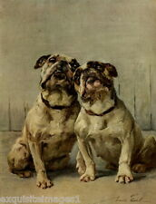 1914 Maud Earl~Two Bulldog Dog Dogs ~ NEW Large Note Cards