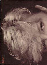 ★ David Bowie: 2-seitiges BRAVO-Poster 'Serious-Moonlight'-Tour 1983, Let'sDance