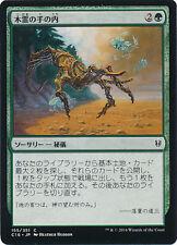 ***4x JAPANESE Kodama's Reach*** Commander 2016 Mint MTG Magic Cards