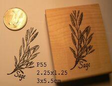 Sage herb plant rubber stamp WM P55