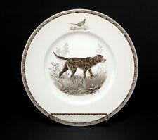Wedgwood American Sporting Dog Plate ~ Gordon Setter