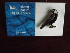 RSPB GNaH jackdaw Metal Pin Badge on Blue FR Card