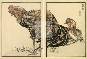 ANTIQUE Original Kono Bairei Woodblock Japanese Prints 1881 Cockerels #E15