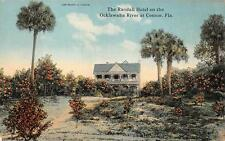 THE RANDALL HOTEL ON THE OCKLAWAHA RIVER AT CONNOR FLORIDA POSTCARD (c. 1910)