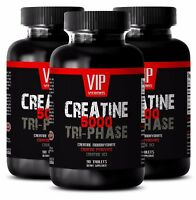 Energy booster men - CREATINE TRI-PHASE 5000mg 3B - creatine