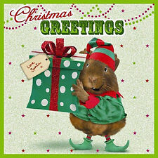 Funny Guinea Pig Charity Xmas Cards A Present From An Elf 10 Pack Christmas Card