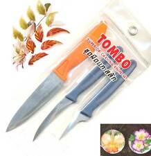 Carving Knife Engraving Thai Art Soap Fruit Vegetable Seeding Stainless Tool set