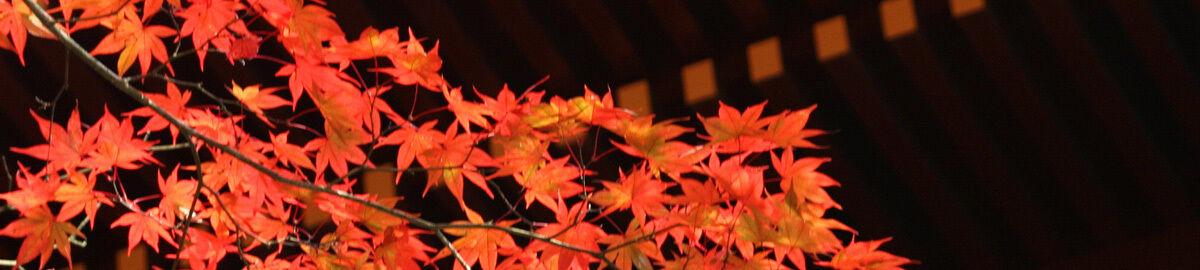 Japan Mono Style