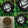 200x Saat China Rare Black + White Rose Blumensamen Home Garten Decor rose I2X8
