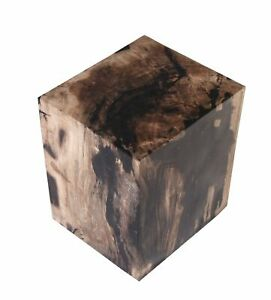 Petrified Wood Stool Accent Table 6