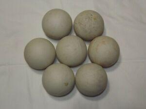 7 LARGE Water Filtration Balls Stones Chattahoochee River Alabama Georgia