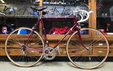 Automoto Champion du Monde Bicycle, Size 58 Vintage L'Eroica