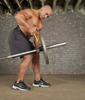 Olympic Single T-Barbell Row handle