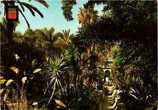 CPM MAROC Marrakech-Jardin Majorelle (342896)