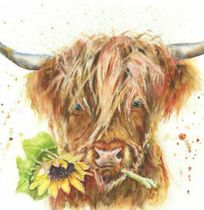 Fine Art Print of Munro the HIGHLAND COW watercolour by HELEN APRIL ROSE   693
