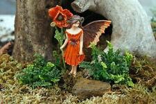 "World's Smallest Boston Fern - 2.5"" Pot - Terrarium/Fairy Garden/House Plant"