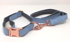 Blue / Rose Gold Puppy or Dog Collar & Lead