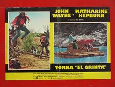 FOTOBUSTA, TORNA EL GRINTA, JOHN WAYNE, KATHARINE HEPBURN, WESTERN USA