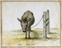 DONKEY at CAEN 1786 ORIGINAL PAINTING France