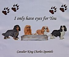 CAVALIER KING CHARLES SPANIEL DOGS GLASSES LENS CLEANING CLOTH COMPUTER IPAD