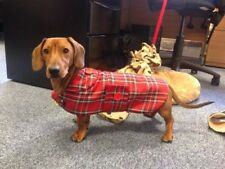 Dachshund Dog Coat Standard (made To Measure) MEASURE AS ITEM DESCRIPTION.