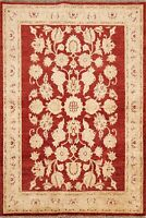 Floral Traditional Peshawar Oriental Area Rug Hand-knotted Wool Foyer Carpet 4x6