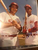 Tony Perez  SIGNED 8x10 AUTO Photo Cincinnati Reds