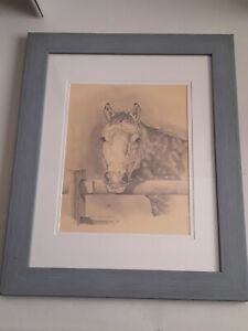 "E.S. Cunningham 1966 Pencil Drawing Sketch of  a Horse 16"" x 13"""