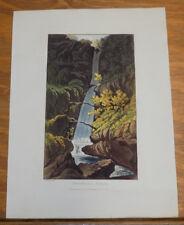 1821 Print, Aquatint Tour of English Lakes///STOCKGILL FORCE (A WATERFALL)