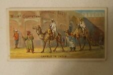 Vintage 1900's -British Empire Series Collector Card - Camels in India