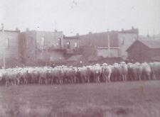 1900s SNAPSHOT PHOTO DUO SHEEP SHEARING TIME BILLINGS MONTANA