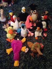 Bird Beanie Babys Lot Of 13