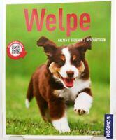 WELPE + Ratgeber Hund + Buch + Halten Erziehen Beschäftigen Pflege Haustier (45)