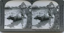 Manila Manille Philippines Philippine Vintage silver print Stereo