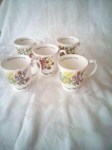 Roy Kirkham Herbs N Spices Fine Bone China Mug