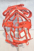 RED NYLON DRIVING HARNESS FOR SINGLE HORSE with diamonte browband in bridle