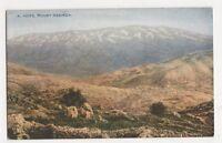 Palestine, Mount Hermon Postcard, B215