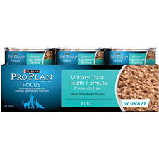 Purina Pro Plan Wet Cat Food Focus Adult Formula Urinary Tract Health Chicken