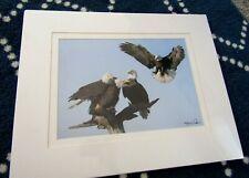 "Bald Eagles 4 Fine Art Photo Print #7753 Steve Doan Signed 13"" x 9 1/2""  Matted"