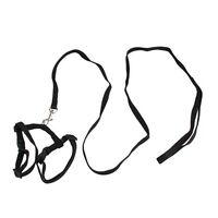 Adjustable Pet Cat Kitten Nylon Lead Leash Harness Set SH V3P6 A1M0 I5Q1