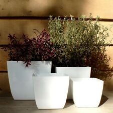 20cm Fiori Santiago White Planter/Contemporary Square Flower Pot/Home/Garden