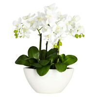 Nearly Natural Artificia Phalaenopsis Silk White Flower Arrangement With Bowl