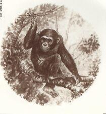 Chimpanzee Design Coffee Mug - New - Choice of 2 Designs - Must L@K :)